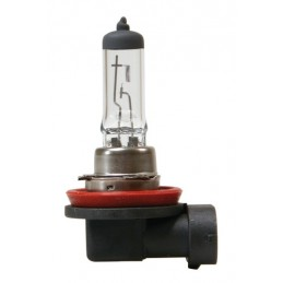 12V Lampada alogena - H8 - 35W - PGJ19-1 - 1 pz  - D Blister