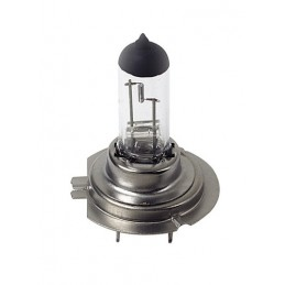 24V Lampada alogena Long Life - H7 - 70W - PX26d - 1 pz  - Scatola