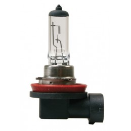 24V Lampada alogena - H11 - 70W - PGJ19-2 - 1 pz  - D Blister