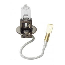24V Lampada alogena - H3 - 70W - PK22s - 1 pz  - D Blister