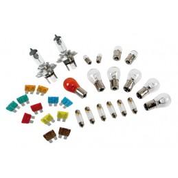 Kit lampade di ricambio 30 pz  alogena 2xH4 - 24V