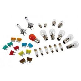 Kit lampade di ricambio 30 pz  alogena 2xH7 - 24V