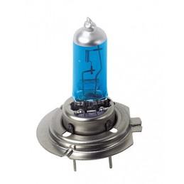 24V Lampada alogena Blu-Xe - (H7) - 100W - PX26d - 2 pz  - D Blister