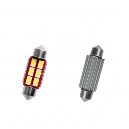 C5W Warning Led canbus no polarity 31 mm
